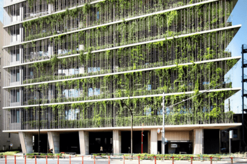 beautiful office building with green hanging plants on the facade